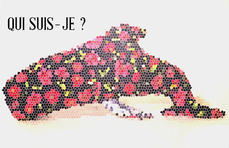 JEU_CONCOURS_BYLO